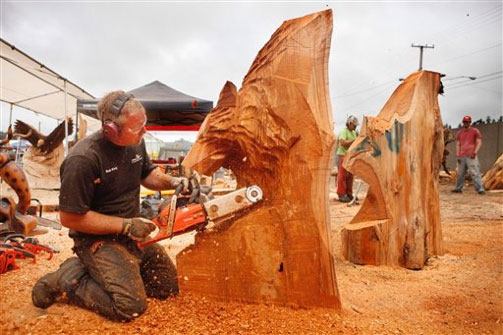 Oregon divisional chainsaw carving championships